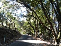 descend to Bear Creek rd