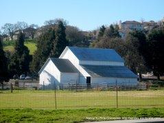 farm off San Ramon Rd