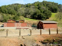 working ranch & barn