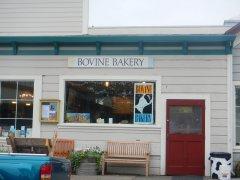 Bovine Bakery #1