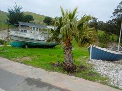 at Nick's Cove
