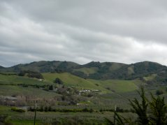 View of Petaluma valley