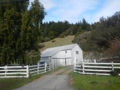 white fenced farm