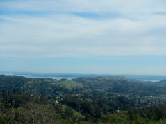 View of Marin