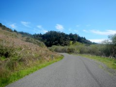 climb up Bolinas Fairfax