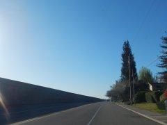 on San Ramon Valley Rd