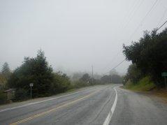 fog in Castro Valley