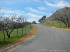 rolling climbs up Cantelow