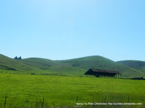 vibrant green ranchlands