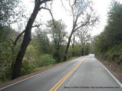 Sage Canyon Rd