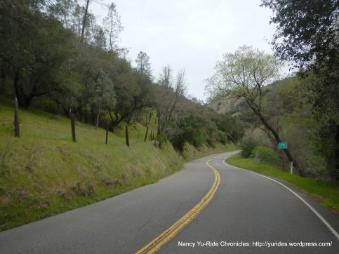 climb up Chiles Pope Valley Rd