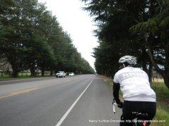 riding along CA 246