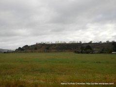 open meadow on CA 246