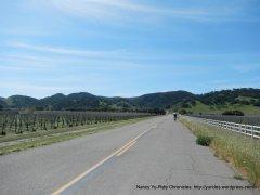 heading towards end of Alisos Canyon