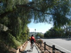 ped/bike path to Old Mission Dr