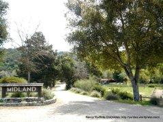 Midland School