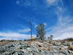 serpentine outcropping