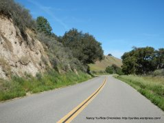 Foxen Canyon Rd