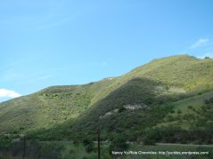 chaparral covered hills