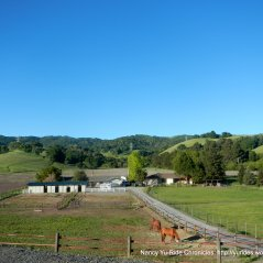 horse ranch & farm on Reliez
