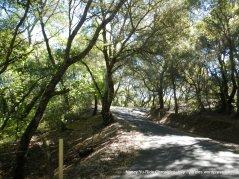 more steep climbs