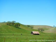 old barn on Camino Tassajara