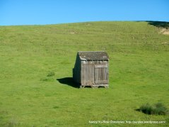 shack near Valley Ford
