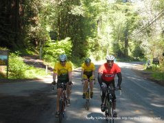on Cazadero Hwy
