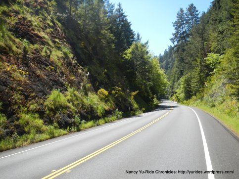 Hwy 116 to Duncans Mills
