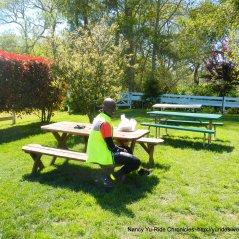 picnic area at Arcangeli's
