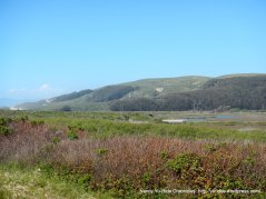 Pescadero Marsh Natural Preserve