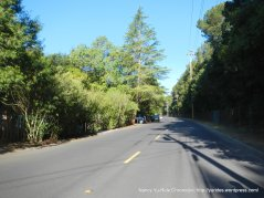 climb up Hidden Valley Rd