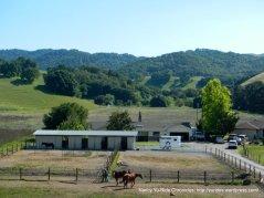 horse ranch-Reliez Valley Rd