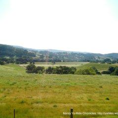 Wooden Valley grasslands