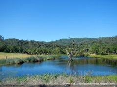 Capell Valley-pond