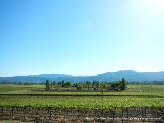 picturesque scene of Napa Valley