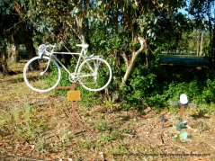 Don Mitchell Memorial-Solano Ave