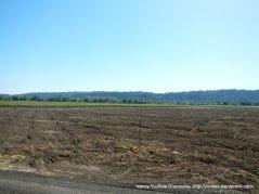 fertile soil of the valley