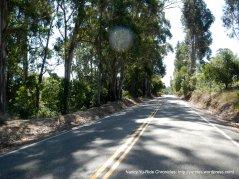 top of Redwood near Marciel Gate