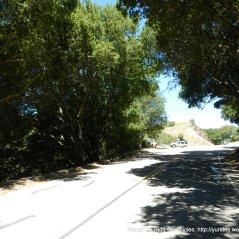 top of climbt-Pinehurst Gate