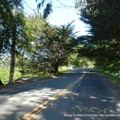 Wildcat Canyon Rd-bad road conditions