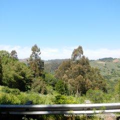 view of Tilden Park