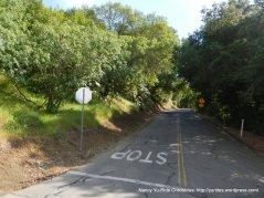 McEwen Rd-steep 1 mile climb