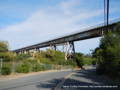 Muir Trestle-Martinez