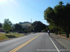 Palo Verde Rd