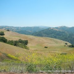 fabulous views-rolling hills and mountains