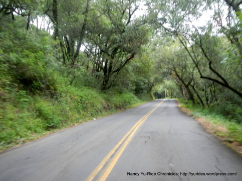 up Mt Veeder Rd
