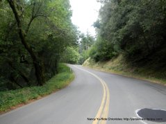 along Pickle Canyon