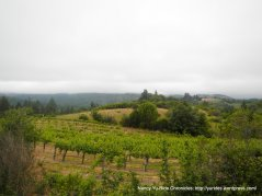 view from top of Veeder