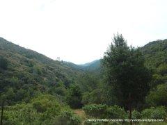 Sage Canyon landscape